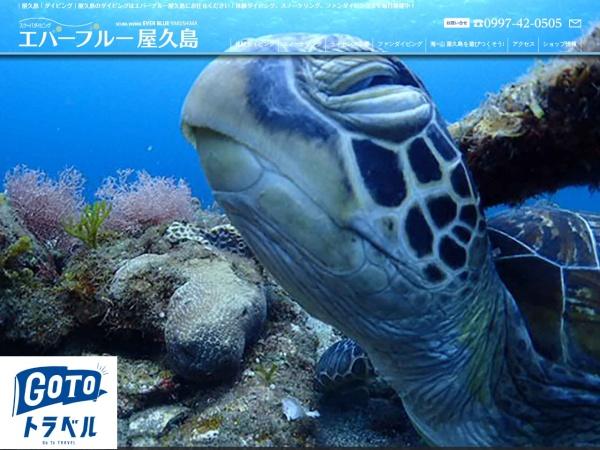 Screenshot of www.yakushima-diving.com