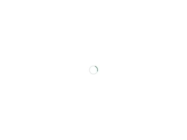 http://www.yanada-law.jp/