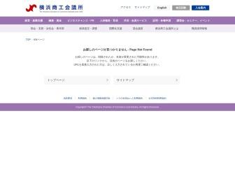 http://www.yokohama-cci.or.jp/worldfesta/2010/index.htm