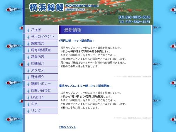 Screenshot of www.yokohama-nishikigoi.com