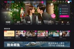 Screenshot of www.youku.com