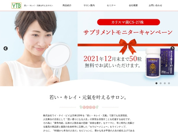 Screenshot of www.ytb-world.com