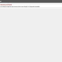 Center for International Business Studies, The Chinese University of Hong Kong (Hong Kong)