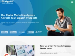Blurbpoint Media promo code and other discount voucher