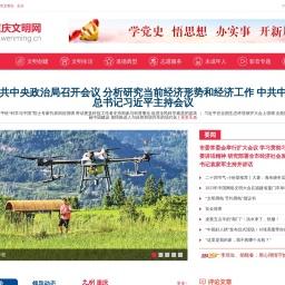 重庆文明网