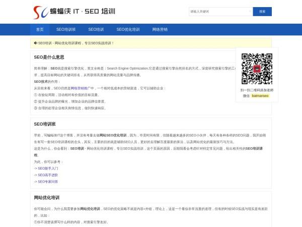 seo.batmanit.com的网站截图