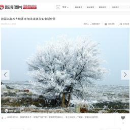 新疆乌鲁木齐现雾凇 银装素裹美如童话世界_高清图集_新浪网