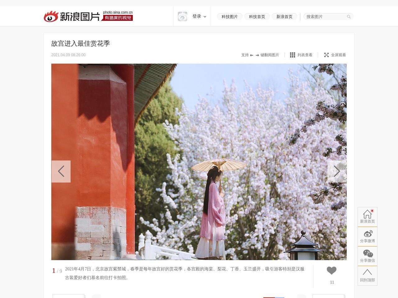 故宫进入最佳赏花季_高清图集_新浪网