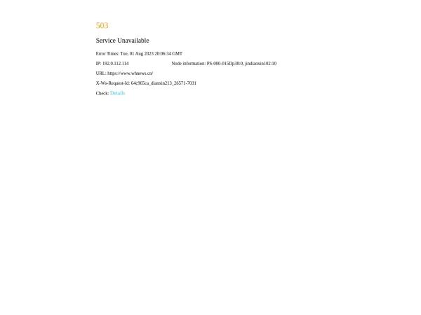 whnews.cn的网站截图