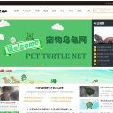 宠物乌龟网