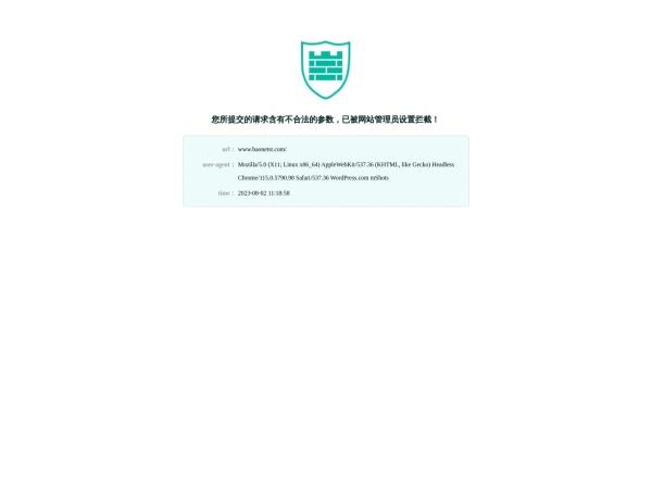 www.baonetst.com的网站截图