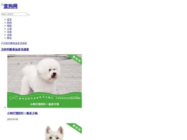 查狗网-宠物狗-宠物犬-宠物交流分享综合门户