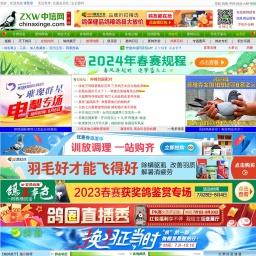 中信网-信鸽信息网