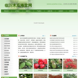 木瓜海棠|木瓜苗|皱皮木瓜苗|木瓜树苗-临沂木瓜海棠网
