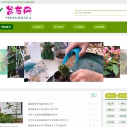 分享盆栽植物种植方法和养护管理知识-盆友网
