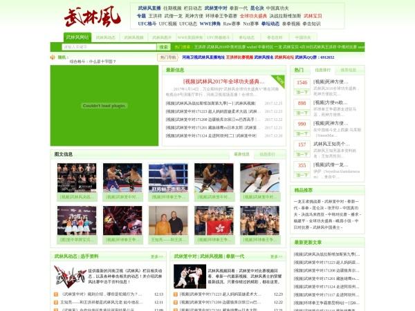 www.wulinfeng8.com的网站截图