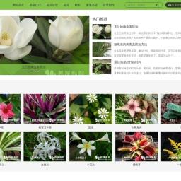 花卉网-养花知识网专注花卉种植及花卉养殖技术