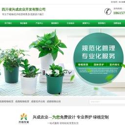 成都植物出租,成都花卉出租,成都绿植租摆-四川省兴成农业开发有限公司