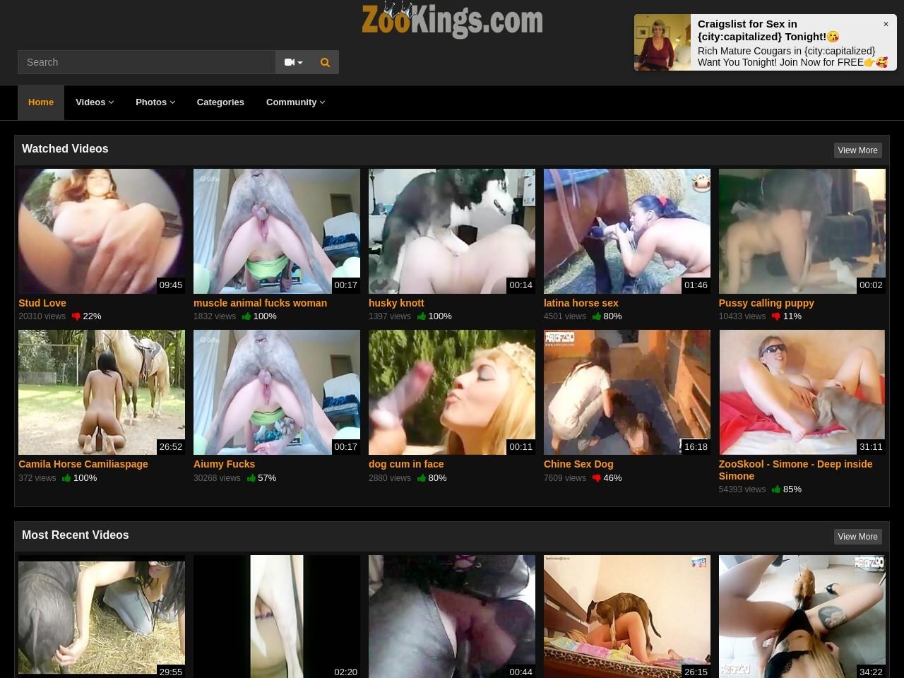 Zoo Videos - Zookings