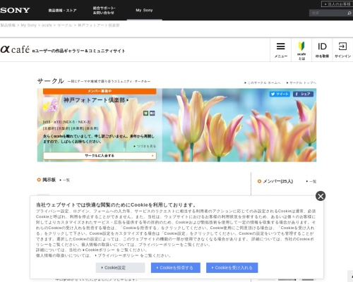 Screenshot of acafe.msc.sony.jp