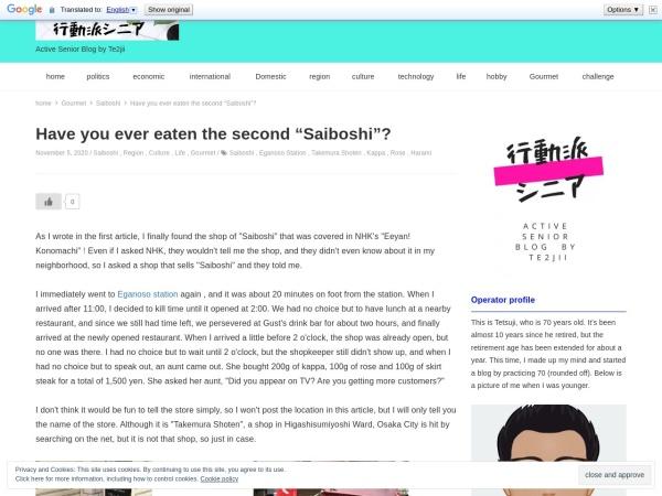 Screenshot of activesenior-blog.com