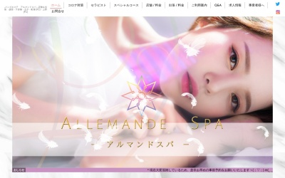 Screenshot of allemande-spa.com