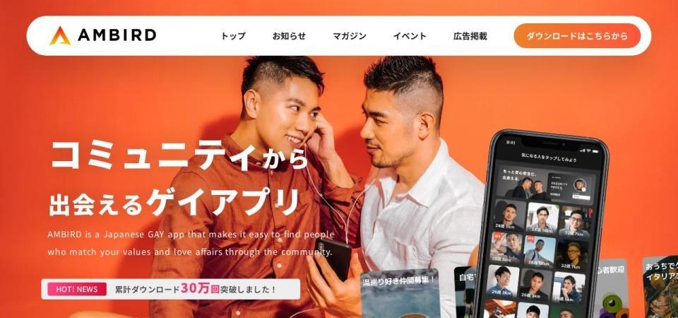 Screenshot of amber-official.com