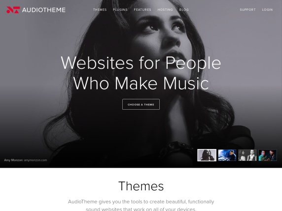 Homepage di AudioTheme