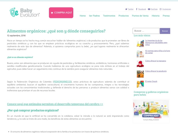 Captura de pantalla de babyevolution.com.co