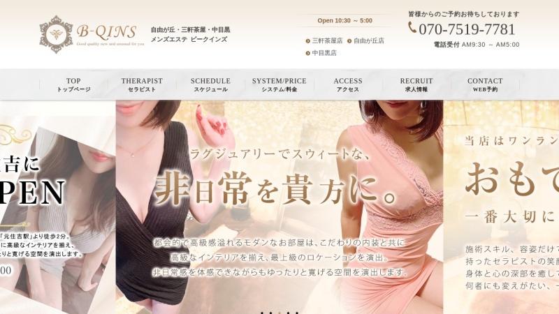 Screenshot of bqins.jp