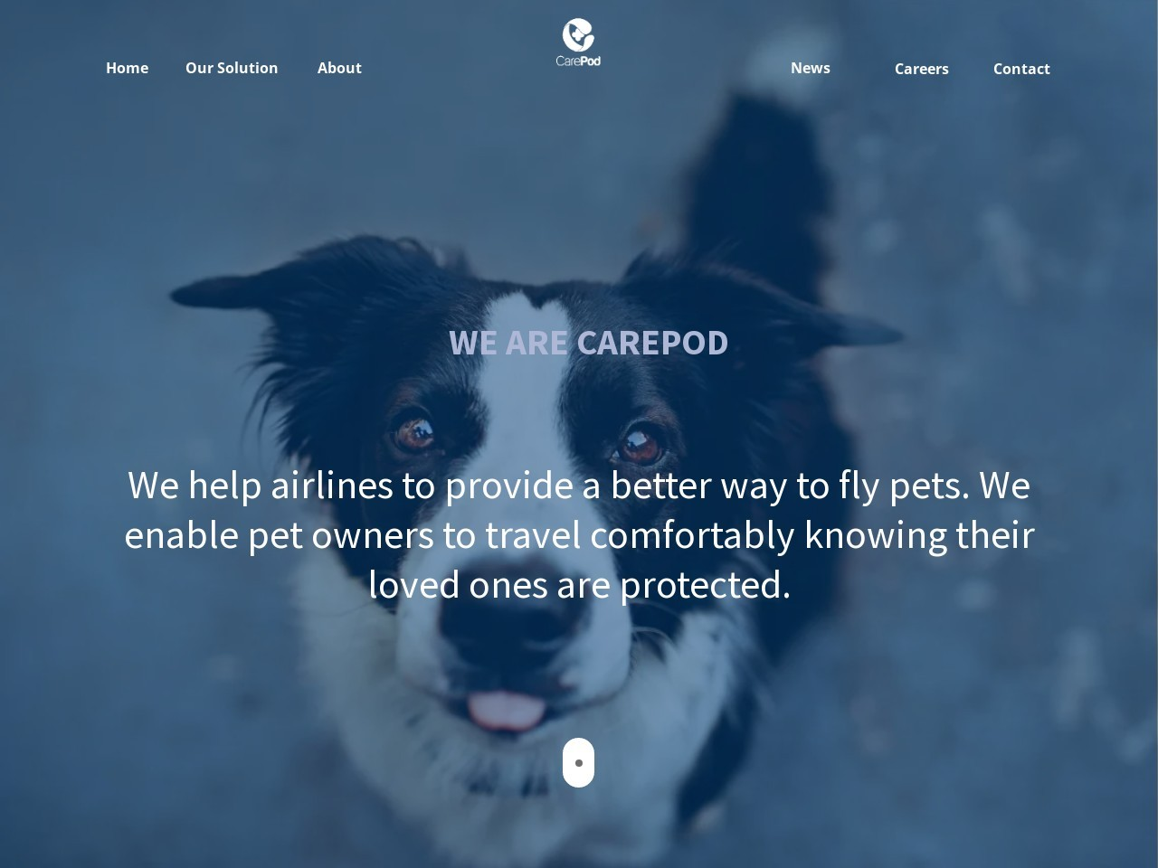 https://care-pod.com