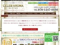 Screenshot of celeb-spa.com
