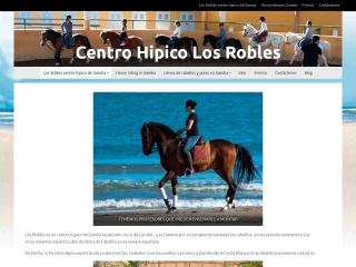 Screenshot of centrohipicogandia.com