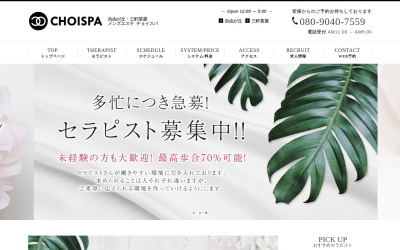 Screenshot of choispa.net