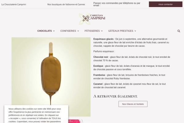 Screenshot of christian-camprini.fr