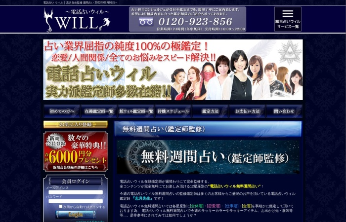 Screenshot of d-will.jp