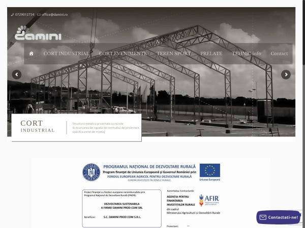 Screenshot of damini.ro