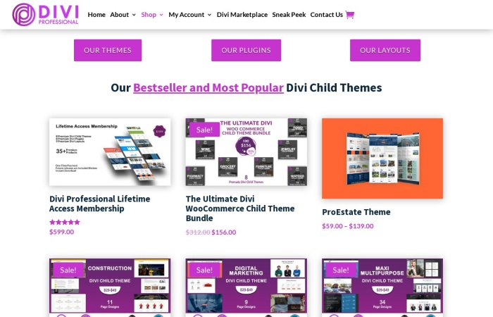 Screenshot of divi-professional.com
