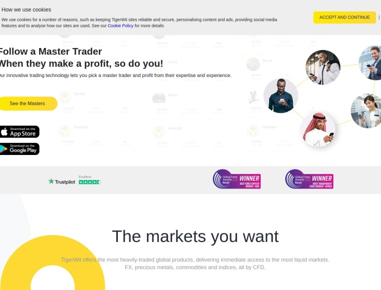 Tigerwit home page review