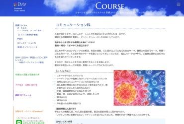 Screenshot of hwt.101emv.com