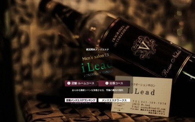 Screenshot of ilead-01.com