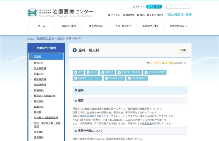 Screenshot of iwakuni.hosp.go.jp