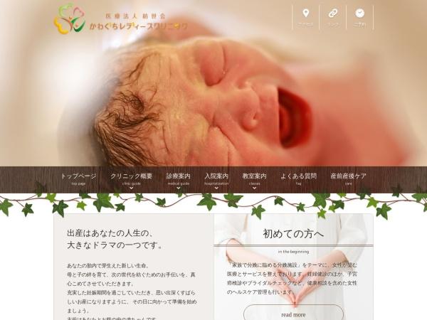 Screenshot of kawaguchiladys-clinic.net