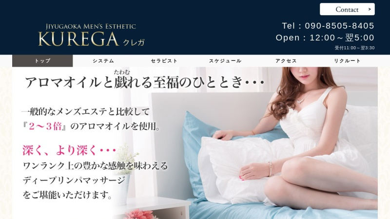 Screenshot of kurega.com