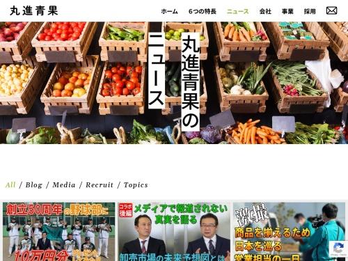 Screenshot of marushin-seika.com