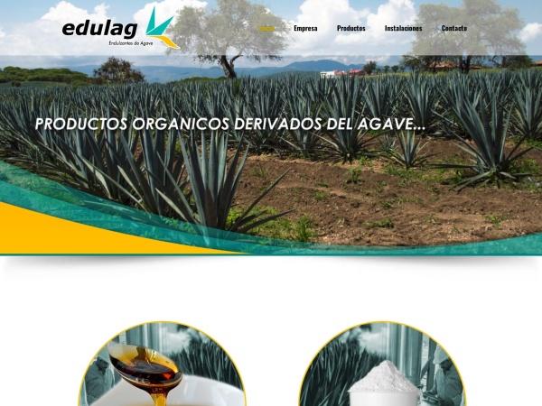Captura de pantalla de mieldeagave.com.mx