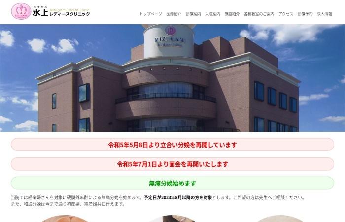 Screenshot of mizugami.com