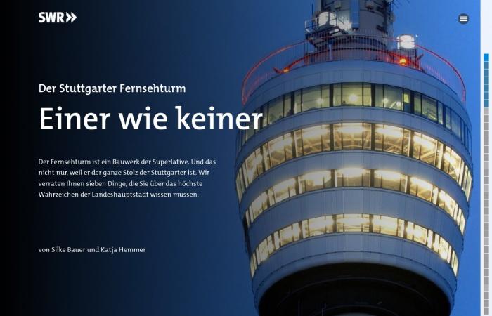 Screenshot von multimedia.swr.de