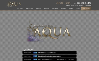 Screenshot of nagoya-aqua.com