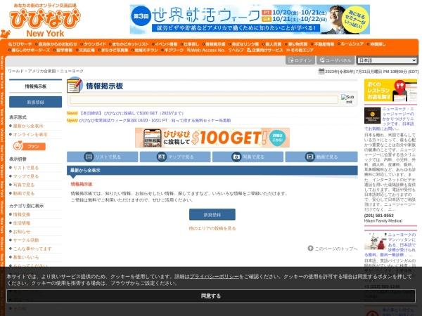 Screenshot of newyork.vivinavi.com